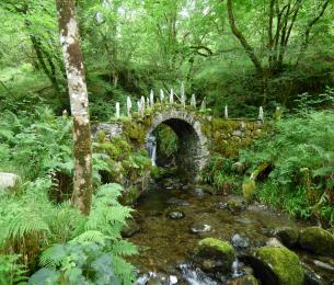 FairyBridge