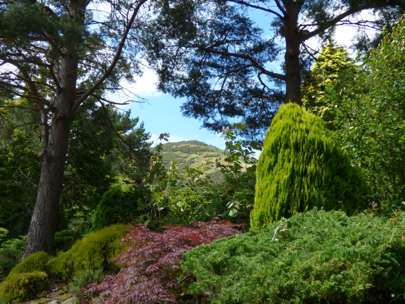 View of Arthurs Seat from Dr Neil's Garden