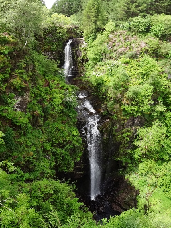 Glenashdale Falls from viewing platform