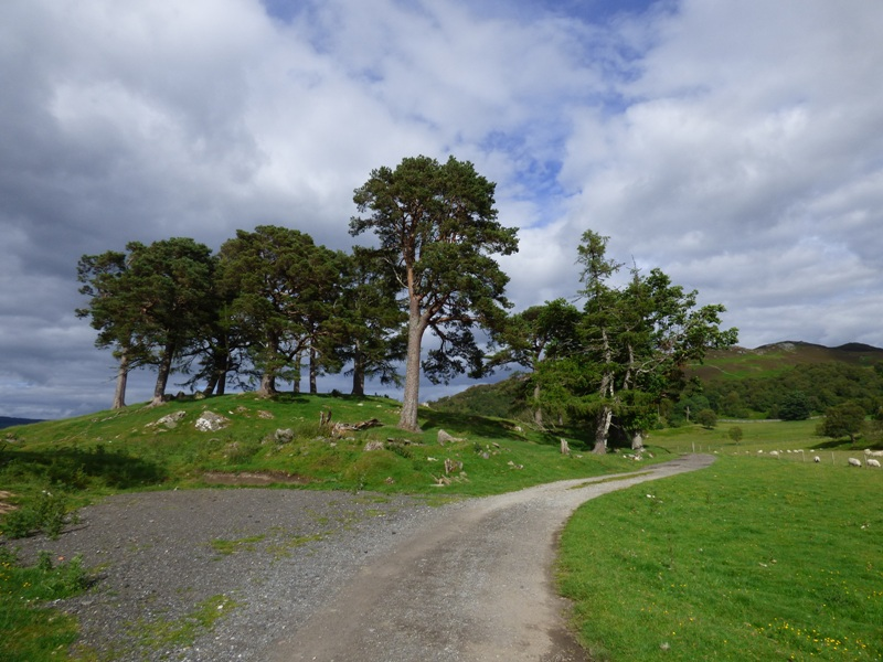 Road to Craigh na Dun location